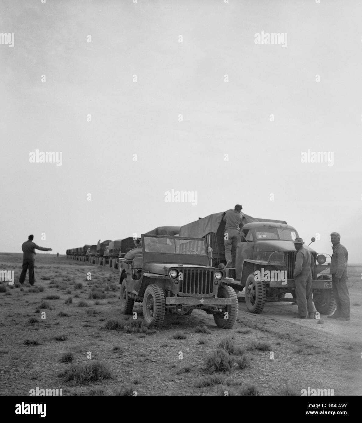 A U.S. Army truck convoy making a rest stop in the desert, 1943. - Stock Image