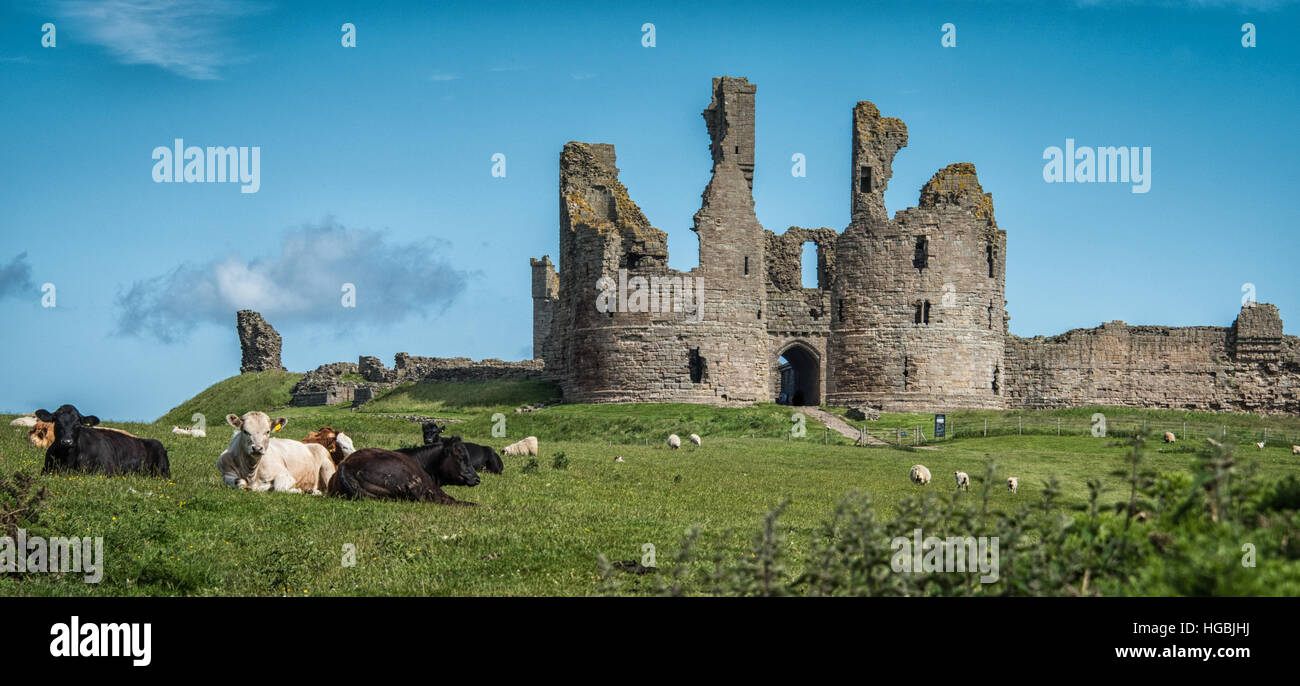 Dunstanburgh Castle, Northumberland Coast, UK - Stock Image