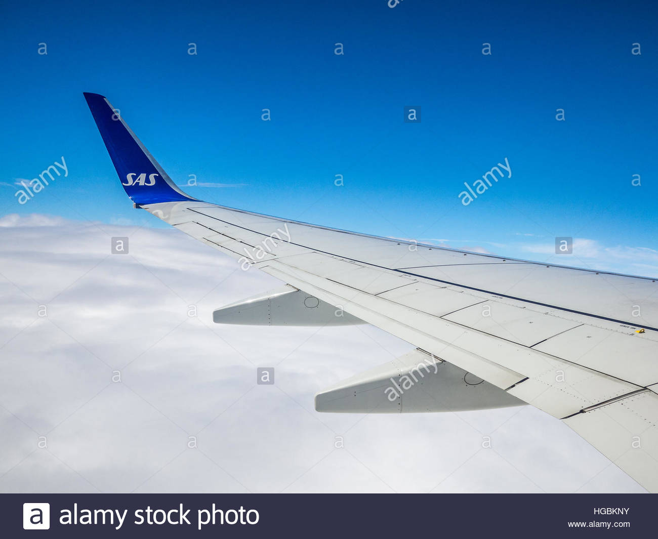 SAS winglet on 737 with blue sky above clouds - Stock Image