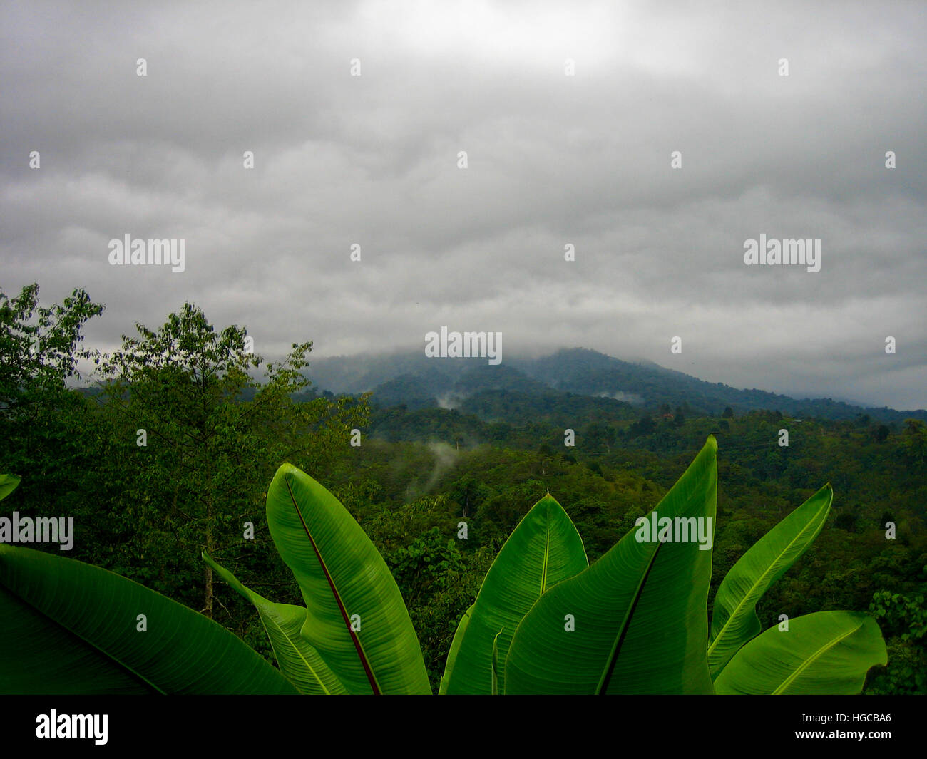 Eco Adventures in Costa Rica - Stock Image