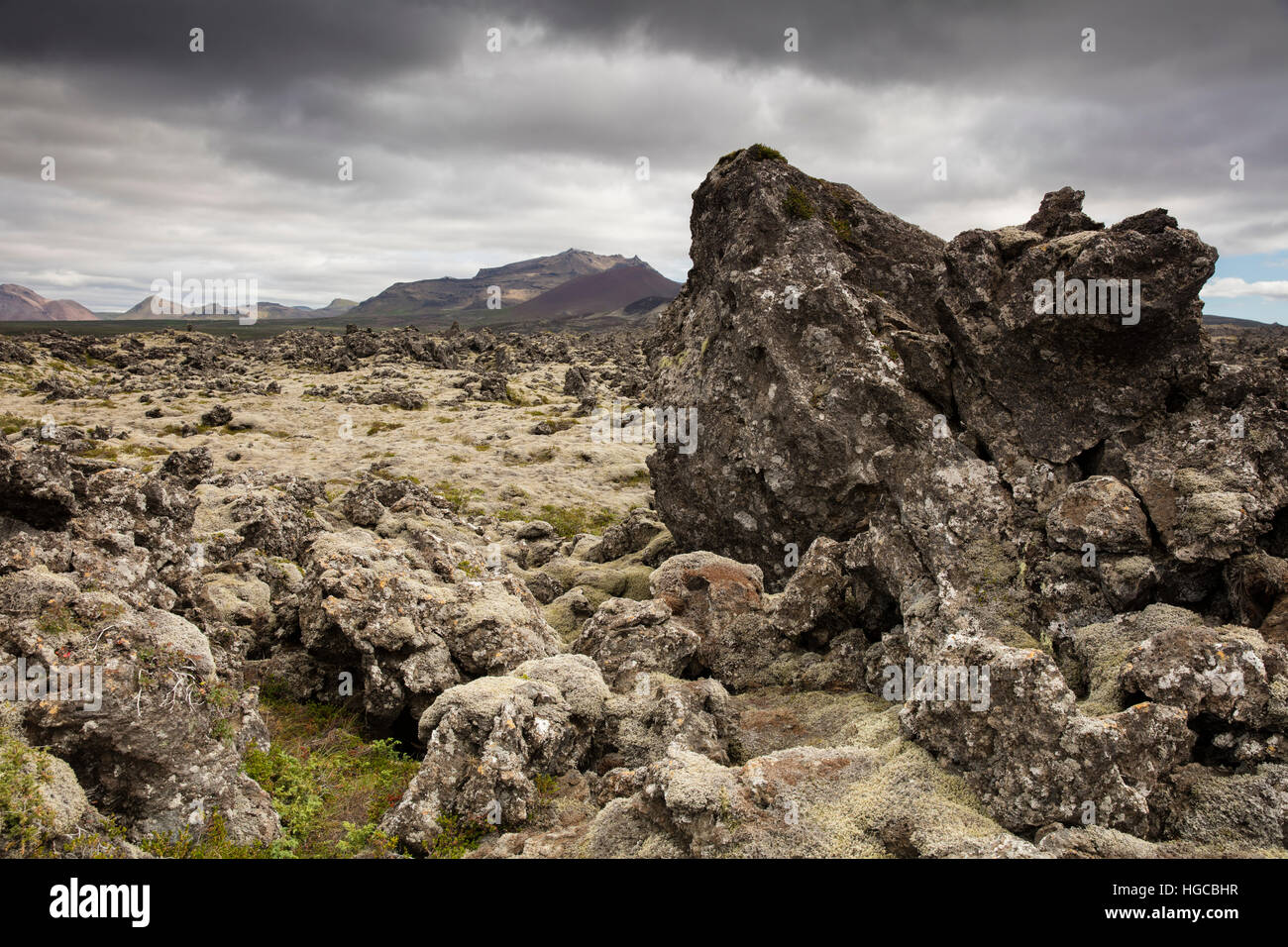 Lava field on the Snaefellsnes Peninsula, West Iceland. - Stock Image