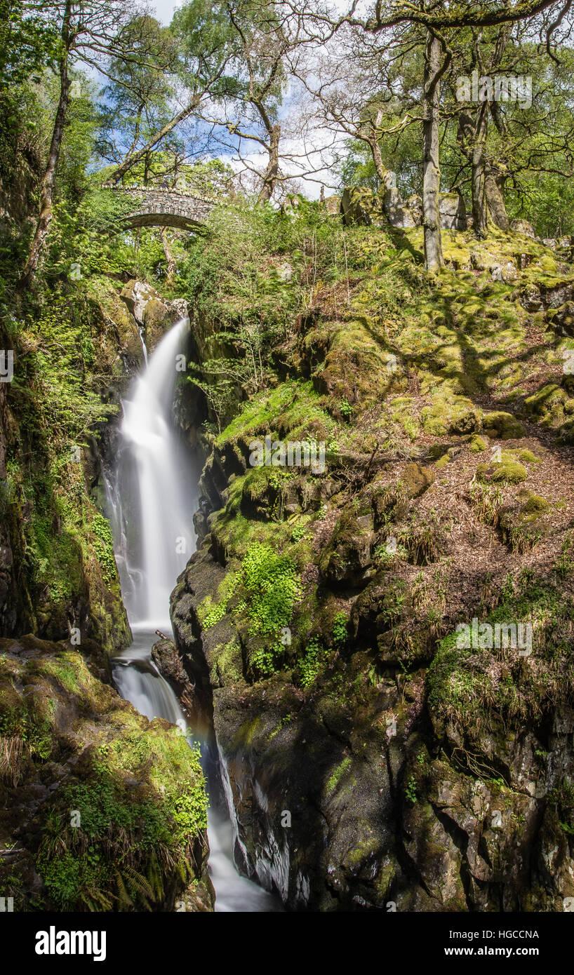 Aira Force, Ullswater, Lake District National Park, Cumbria, England, United Kingdom, Europe - Stock Image