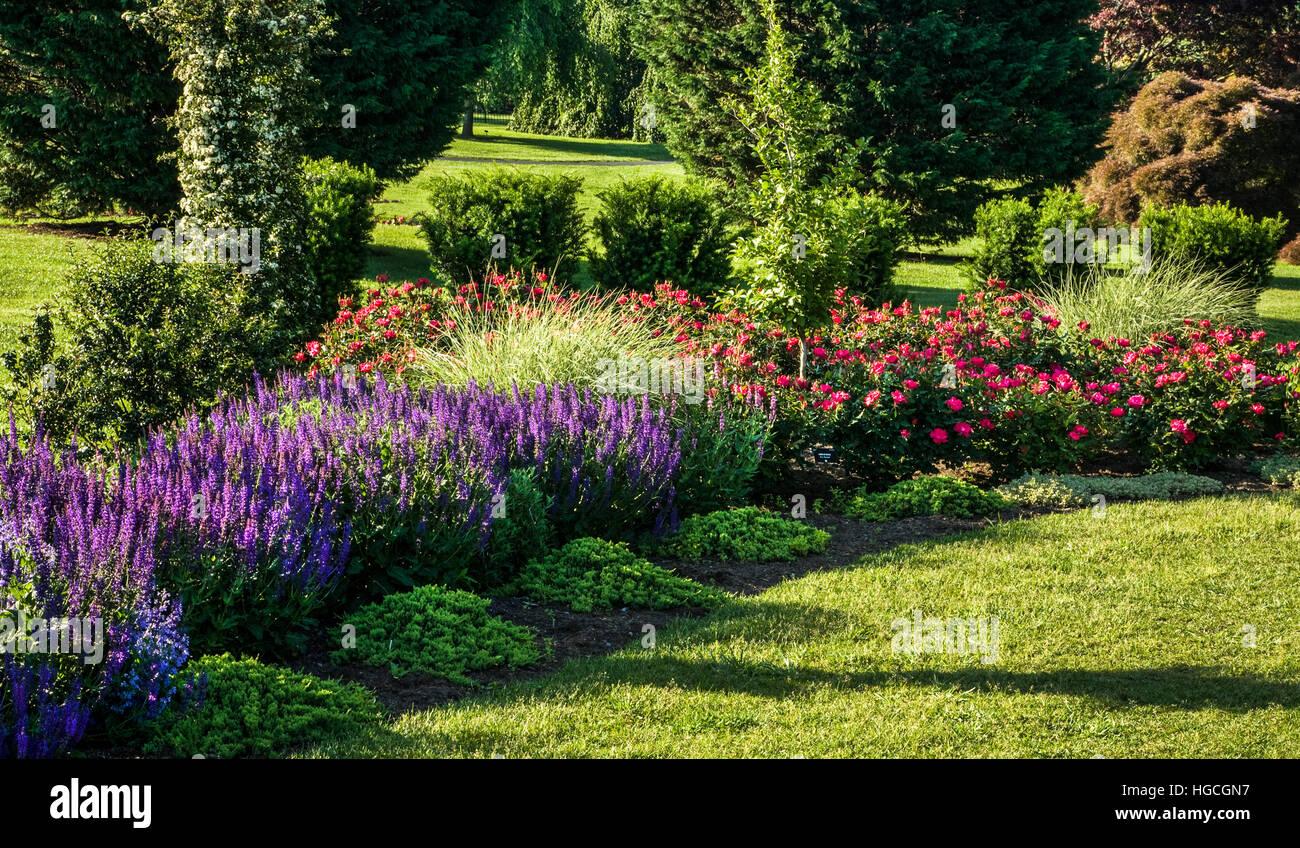 Colorful Perennial Flower Garden At The Hershey Gardens, Pennsylvania, USA