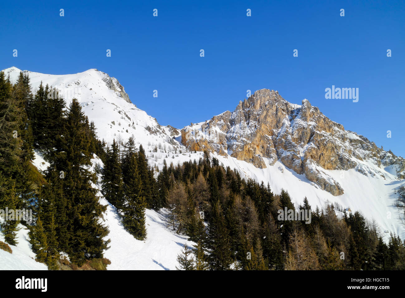 Pine trees on snowy slopes in high mountains on blue sky winter day, Les Arcs, Alps, France - Stock Image
