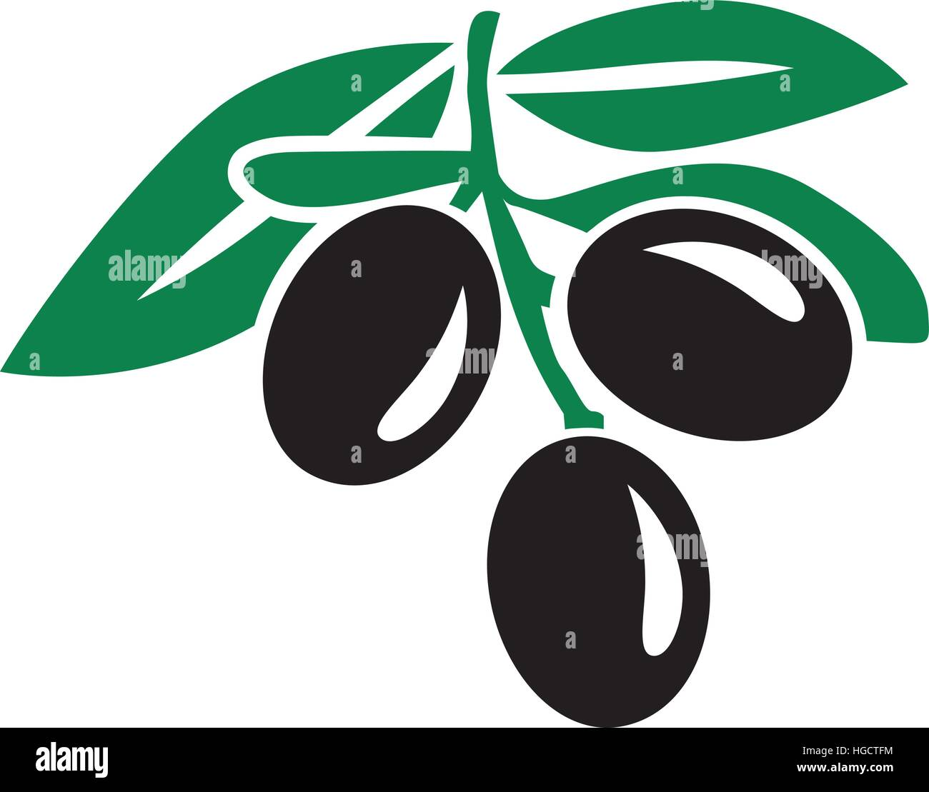 Black Olives with leaves - Stock Vector