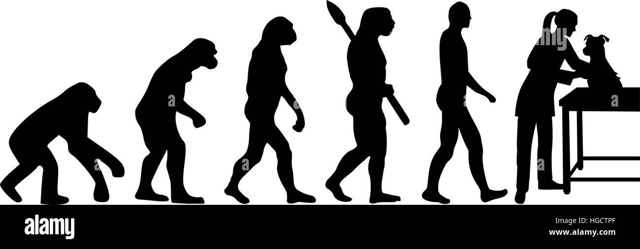 Female veterinarian evolution - Stock Vector