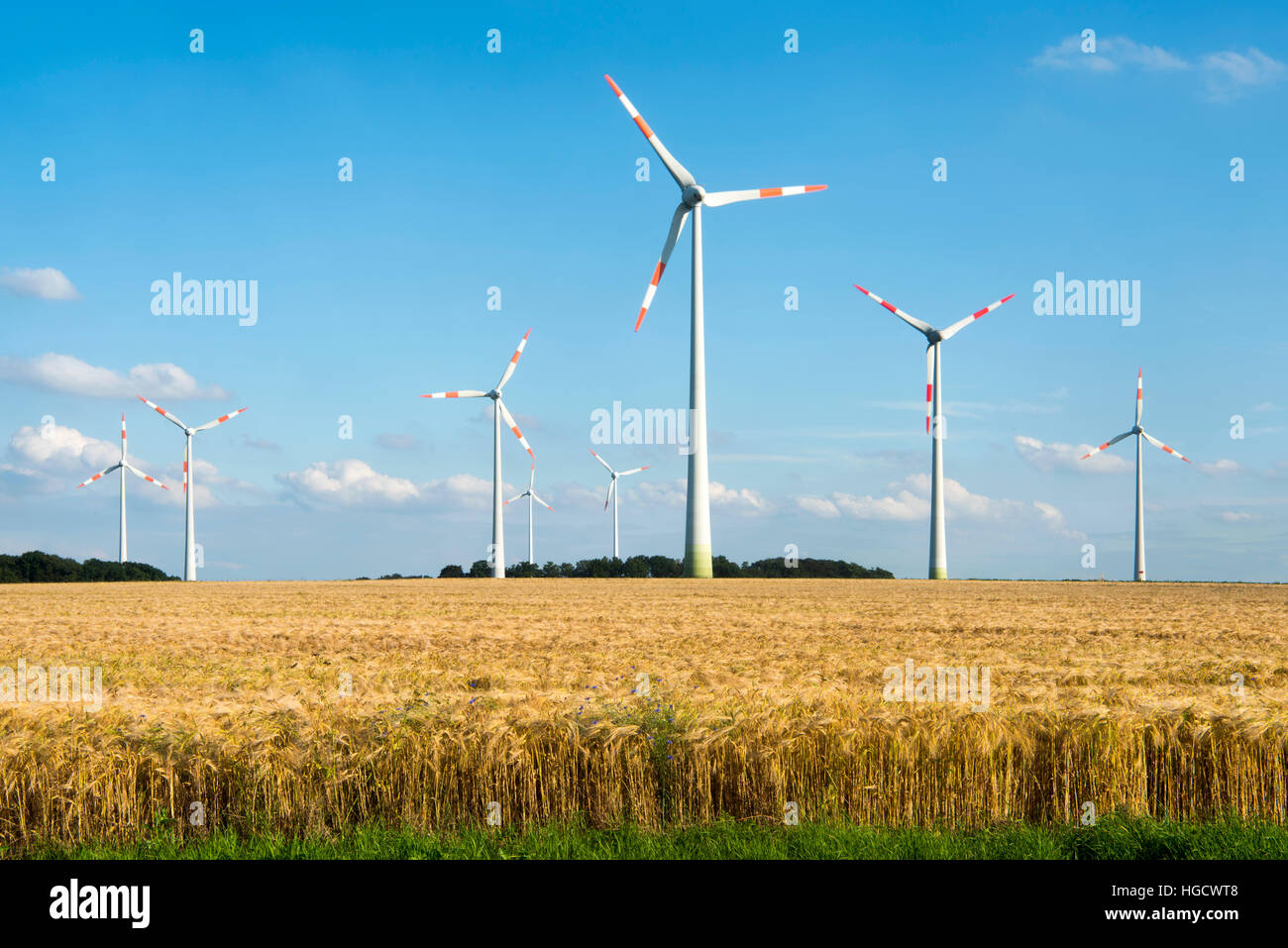 Deutschland, Nordrhein-Westfalen, Kreis Borken, Ahaus, Windpark nordöstlich von Ahaus - Stock Image