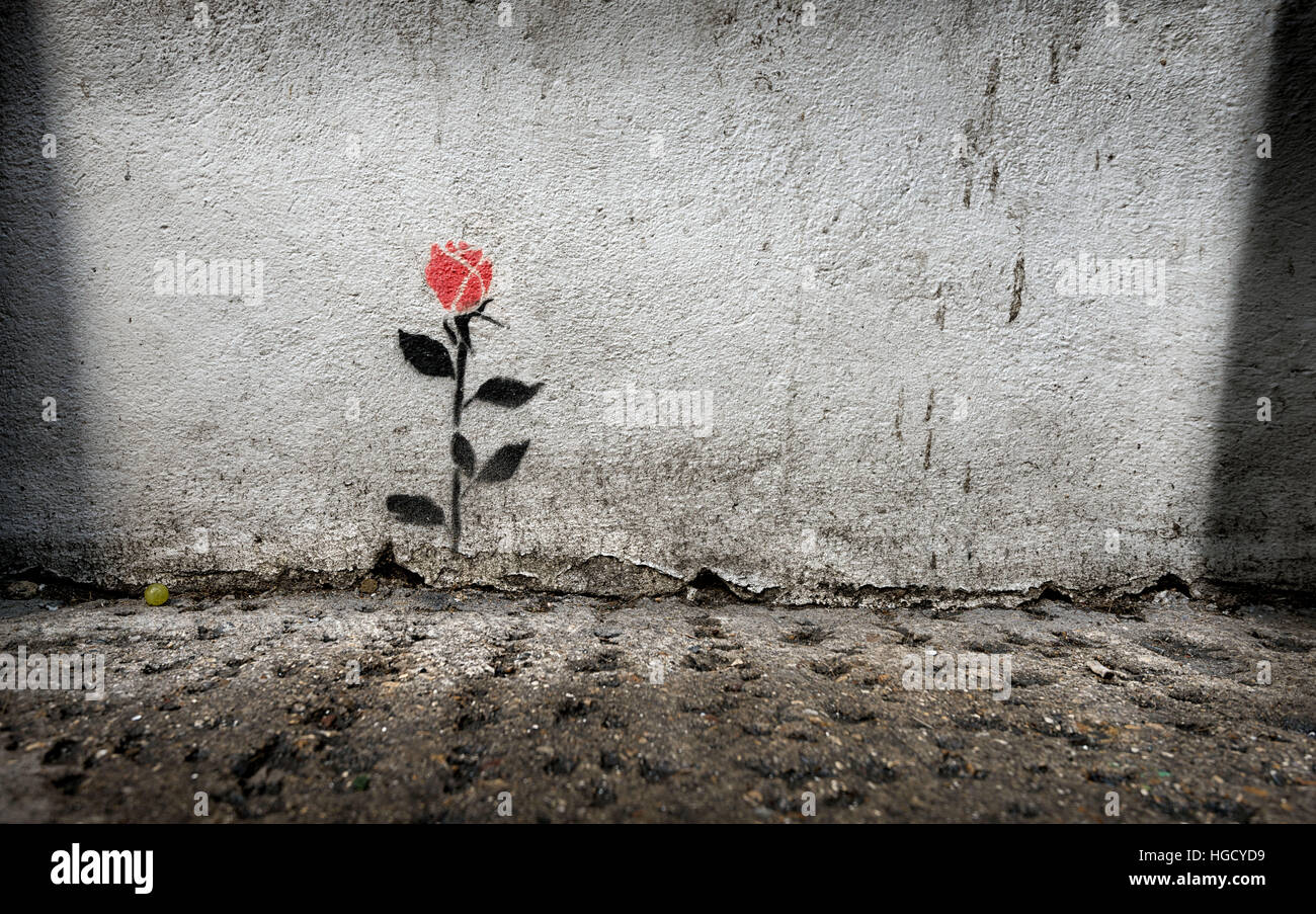 Red rose stencil graffiti on a wall in Brick Lane, London - Stock Image