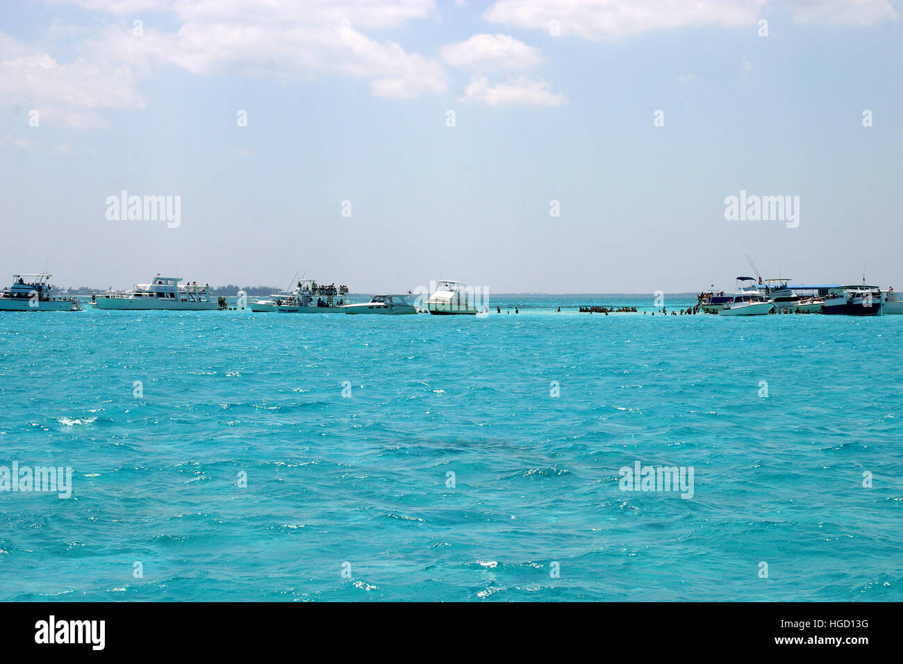 Stingray City - Stock Image