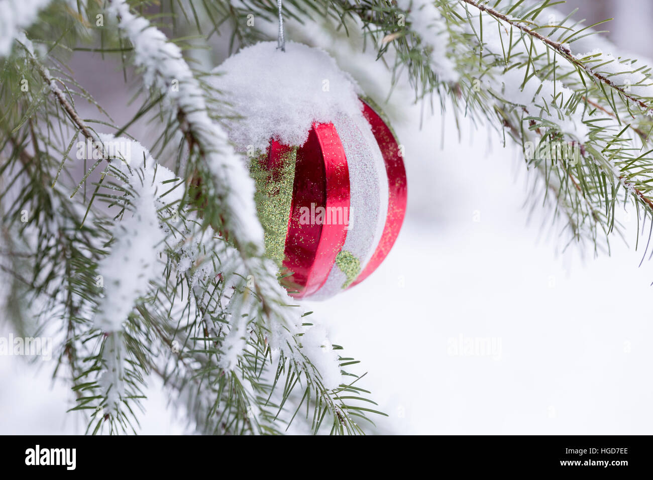 Snow covered tree outdoors with Christmas decorations Stock Photo