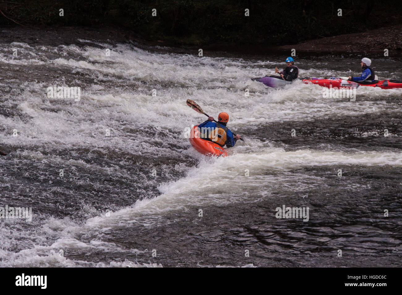 Kayakers attempt to paddle back up the weir on the River Exe at Bickleigh in Devon. - Stock Image
