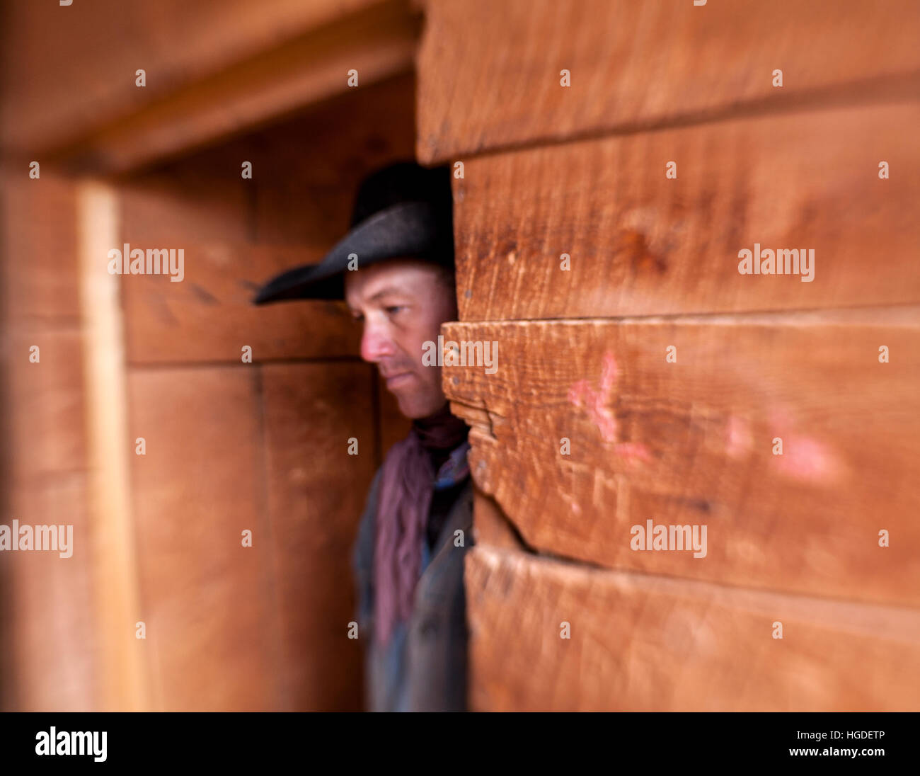 LB00141-00...WYOMING - Barry Crago in the barn on the Willow Creek Ranch.  MR# C11 Stock Photo