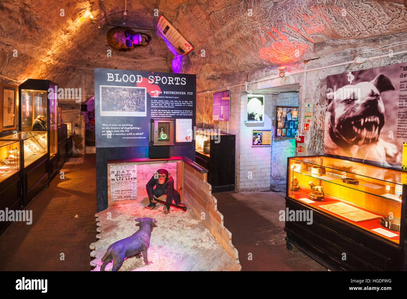 England, East Sussex, Hastings, The True Crime Museum, Interior View - Stock Image