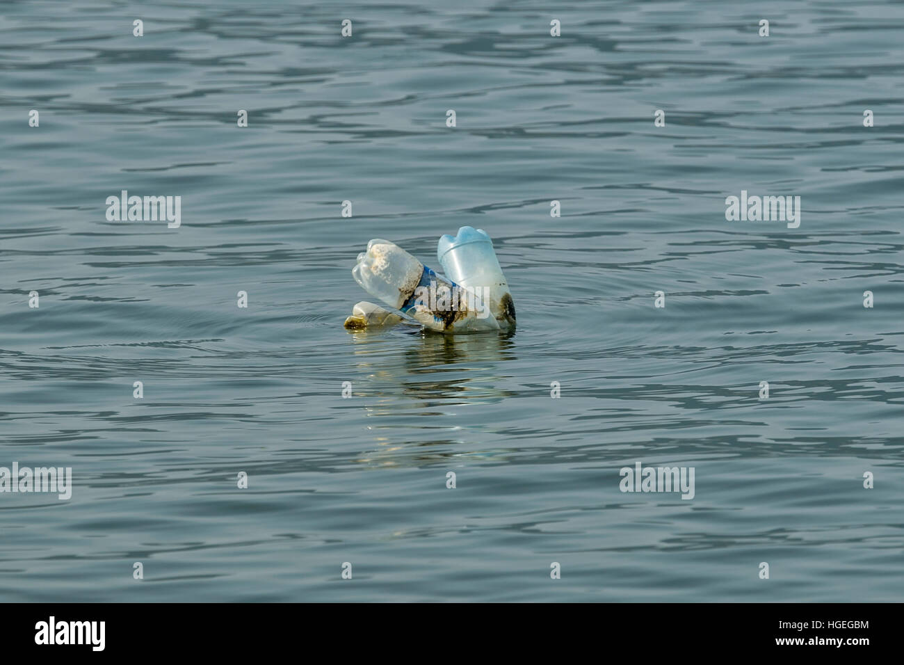 Plastic bottles that float the river Danube - Stock Image
