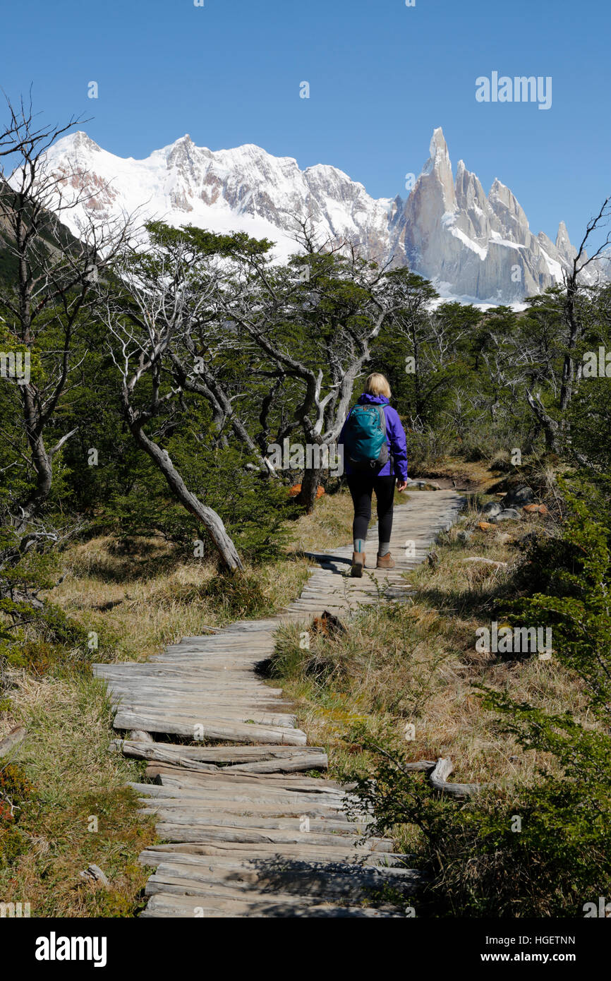 Hiker on trail to Laguna Torre with view of Cerro Torre, El Chalten, Patagonia, Argentina, South America - Stock Image
