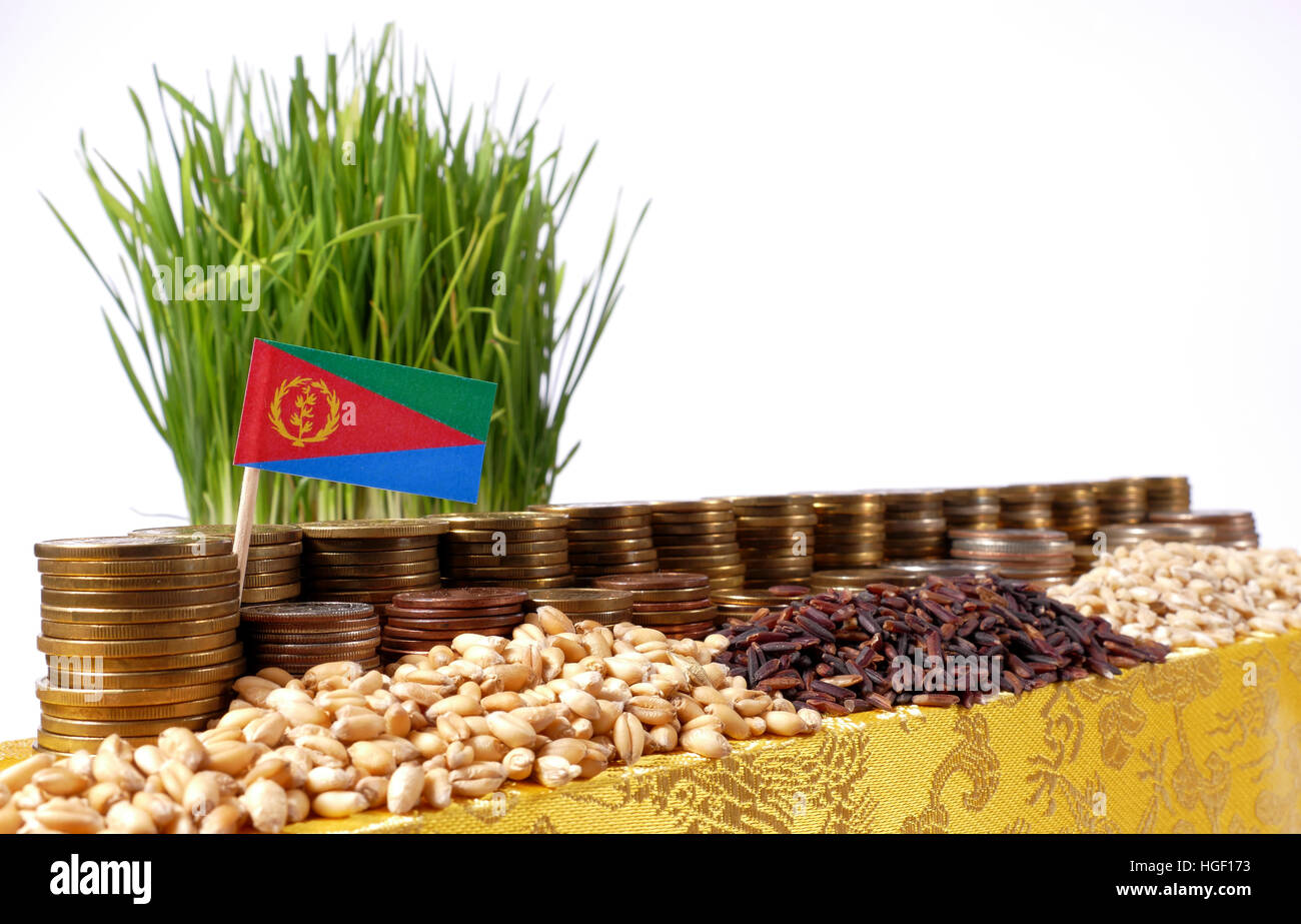 Eritrea flag waving with stack of money coins and piles of wheat and rice seeds - Stock Image