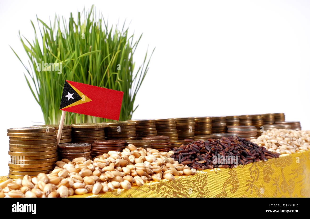 East Timor flag waving with stack of money coins and piles of wheat and rice seeds - Stock Image