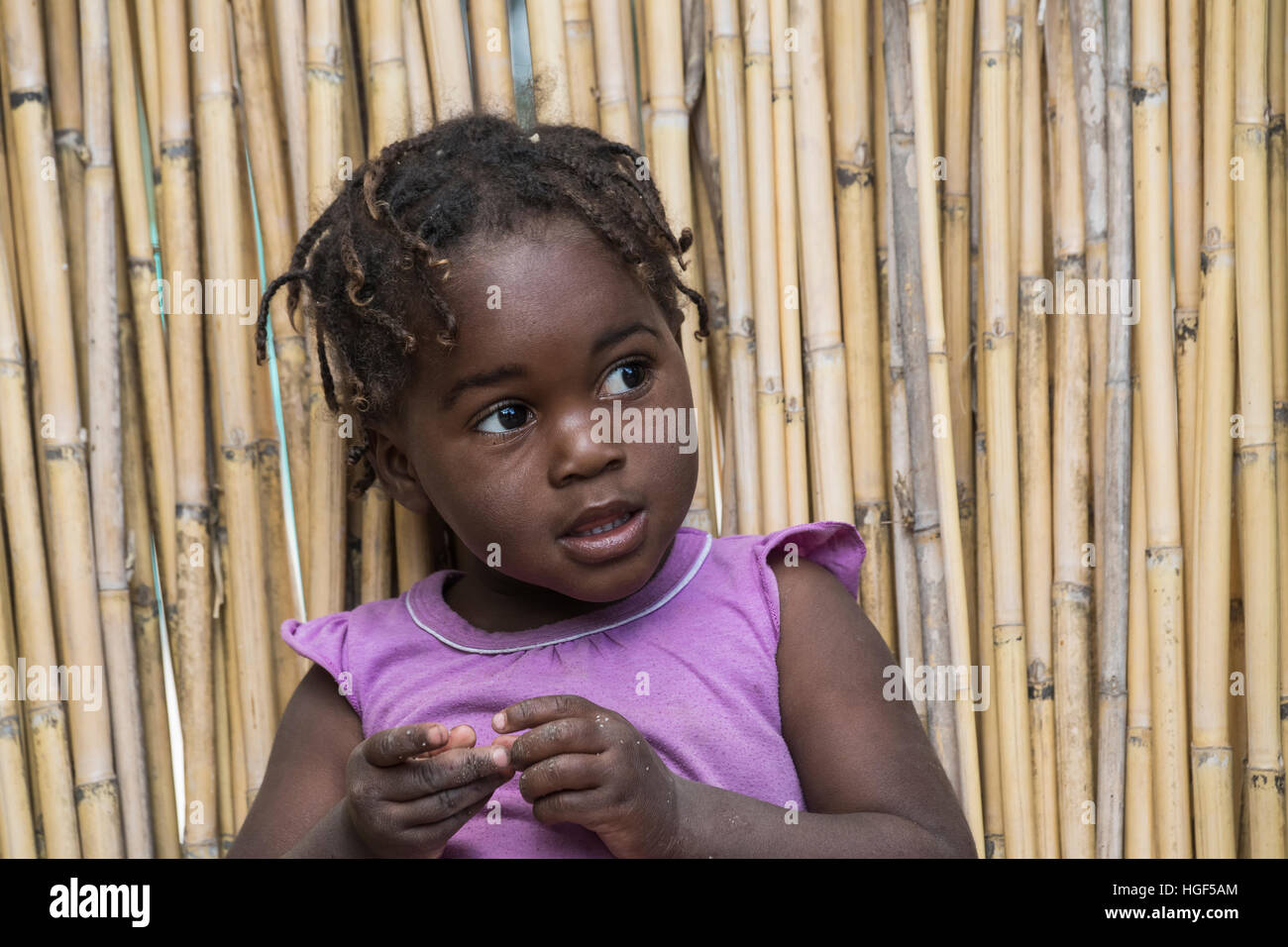 Young African girl with braids, Botswana, Namibia - Stock Image