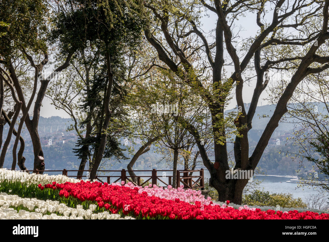 The Emirgan Park  is a historical urban park located at the Emirgan neighbourhood in the Sariyer district of Istanbul, - Stock Image