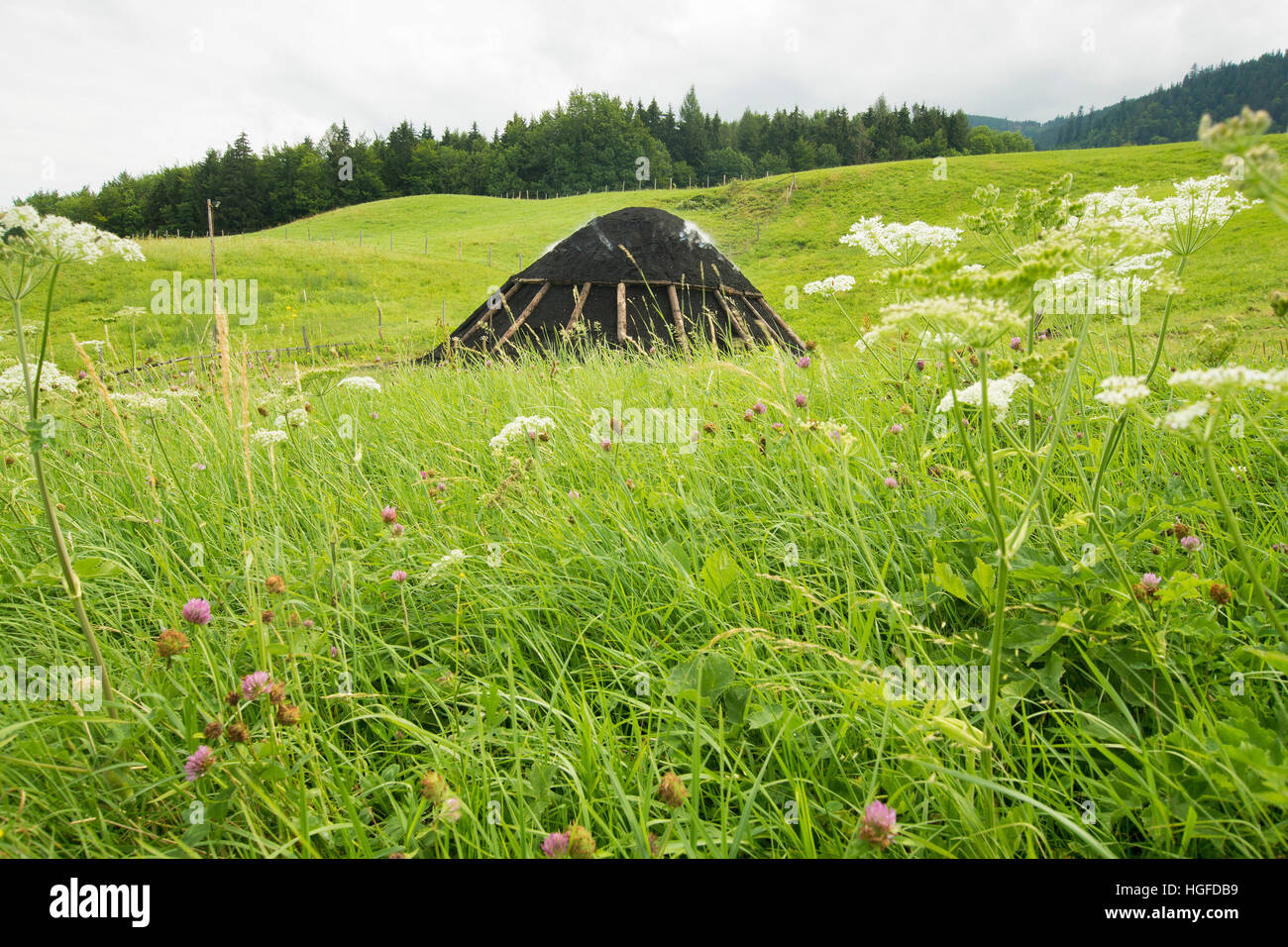 Charcoal pile and hut in  Neukirchen - Stock Image