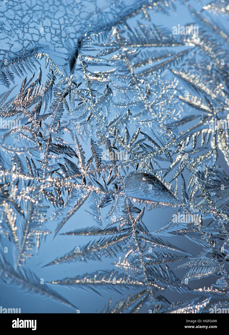 Close up of ice crystals forming intricate leafy patterns on a window with blue sky in the background. Shallow depth Stock Photo