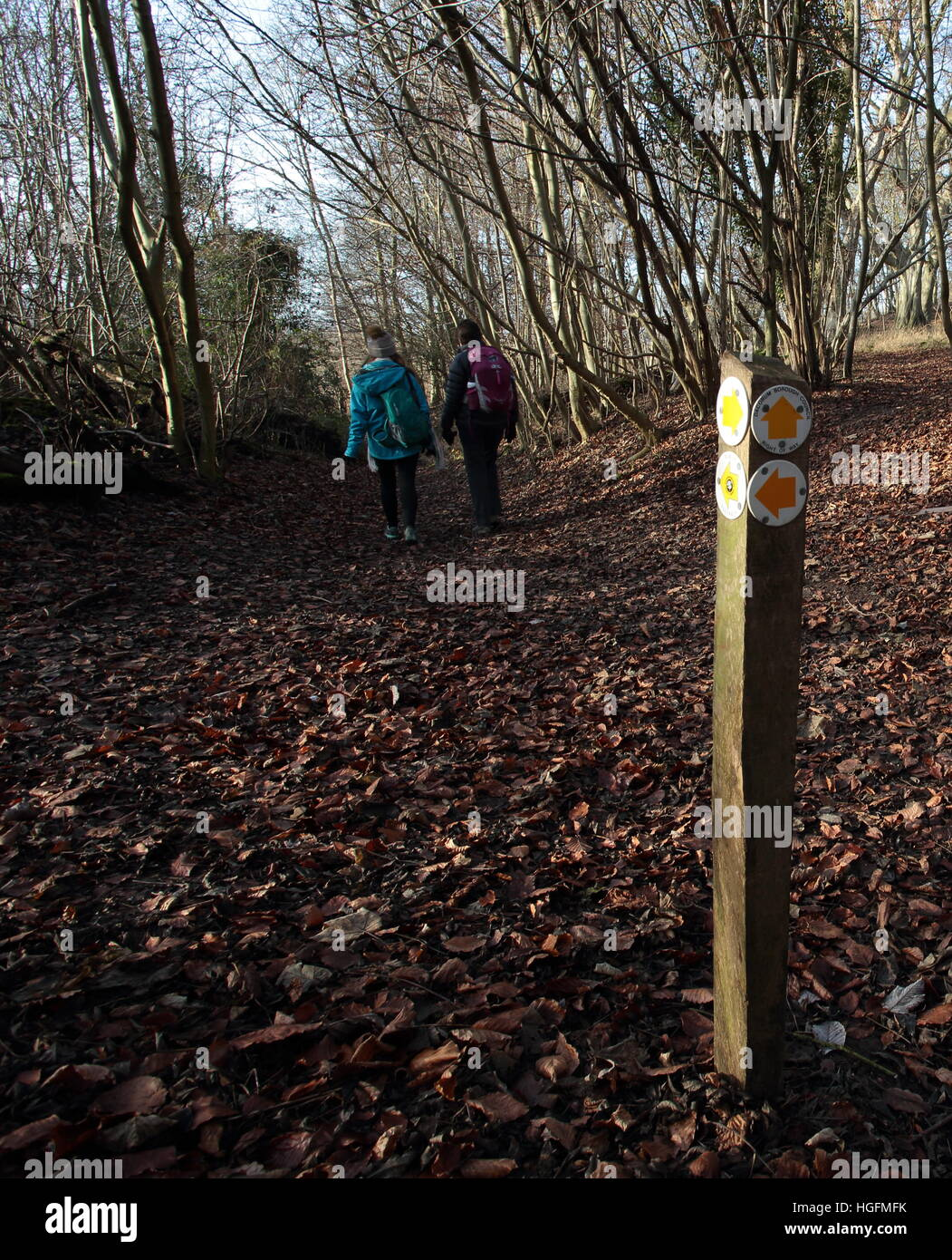 Two walkers on thhe Ridgeway in Hertfordshire,with a footpath sign and leaves. - Stock Image