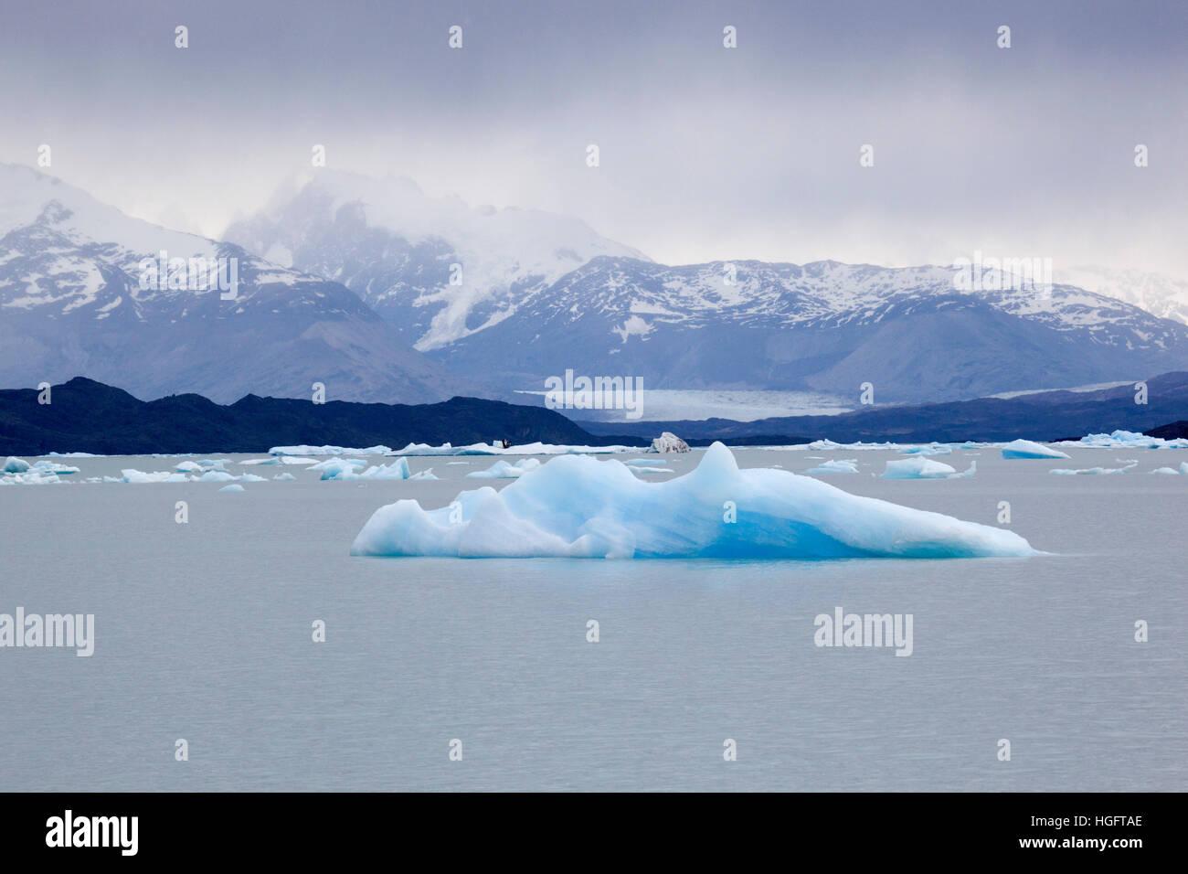 Icebergs on Lago Argentino, El Calafate, Parque Nacional Los Glaciares, Patagonia, Argentina, South America - Stock Image