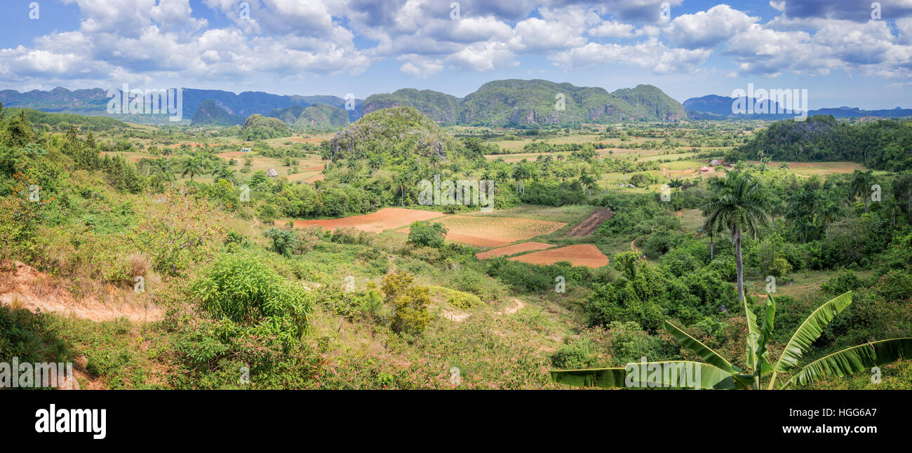 Panorama of Vinales Valley, Cuba Stock Photo