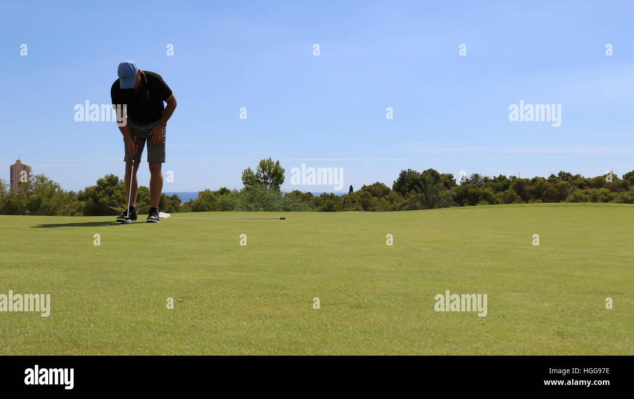 A golfer lines up a shot on the putting green Stock Photo