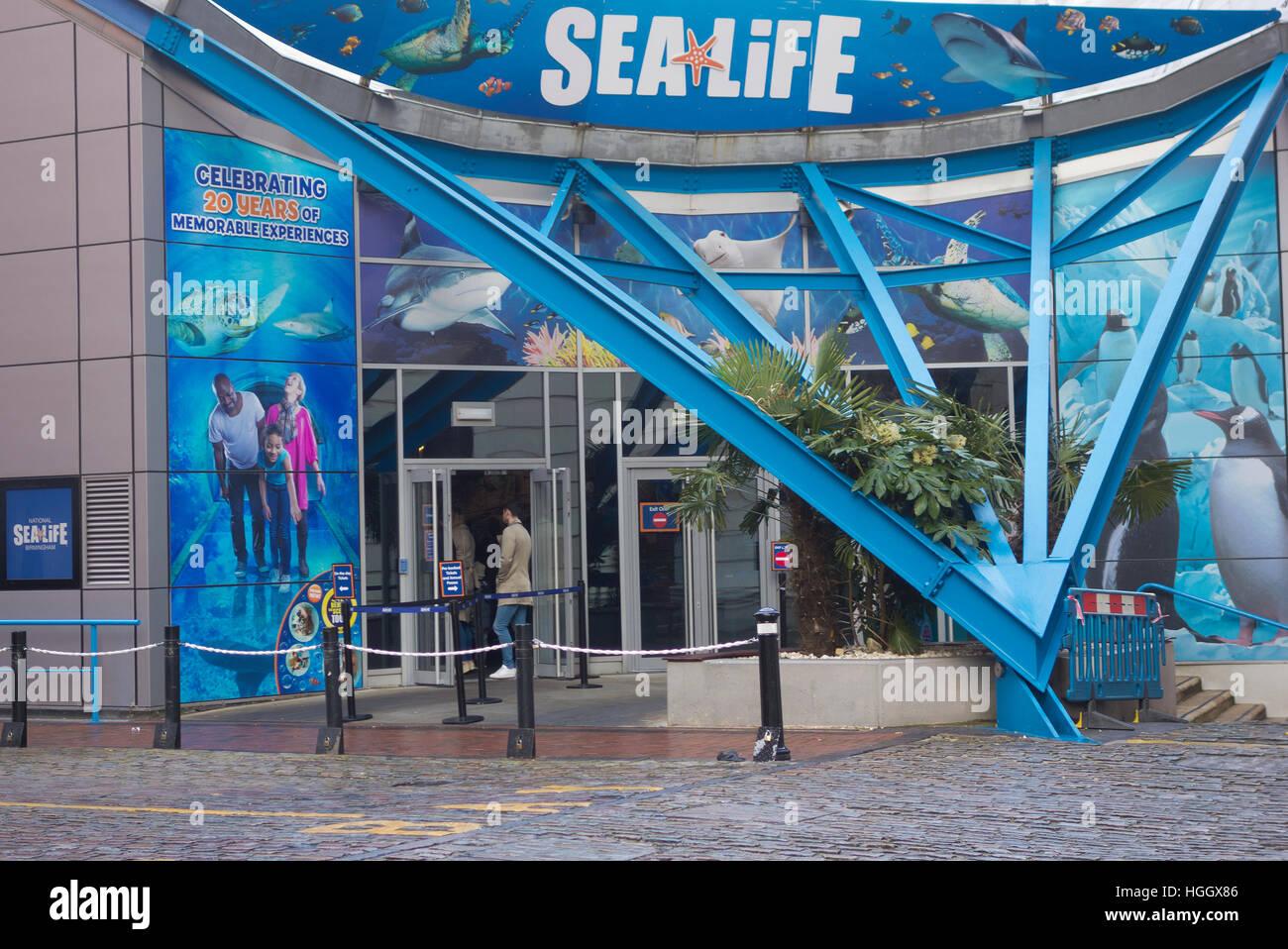 National Sea Life Centre, Brindleyplace, Birmingham, West Midlands, England, UK - Stock Image