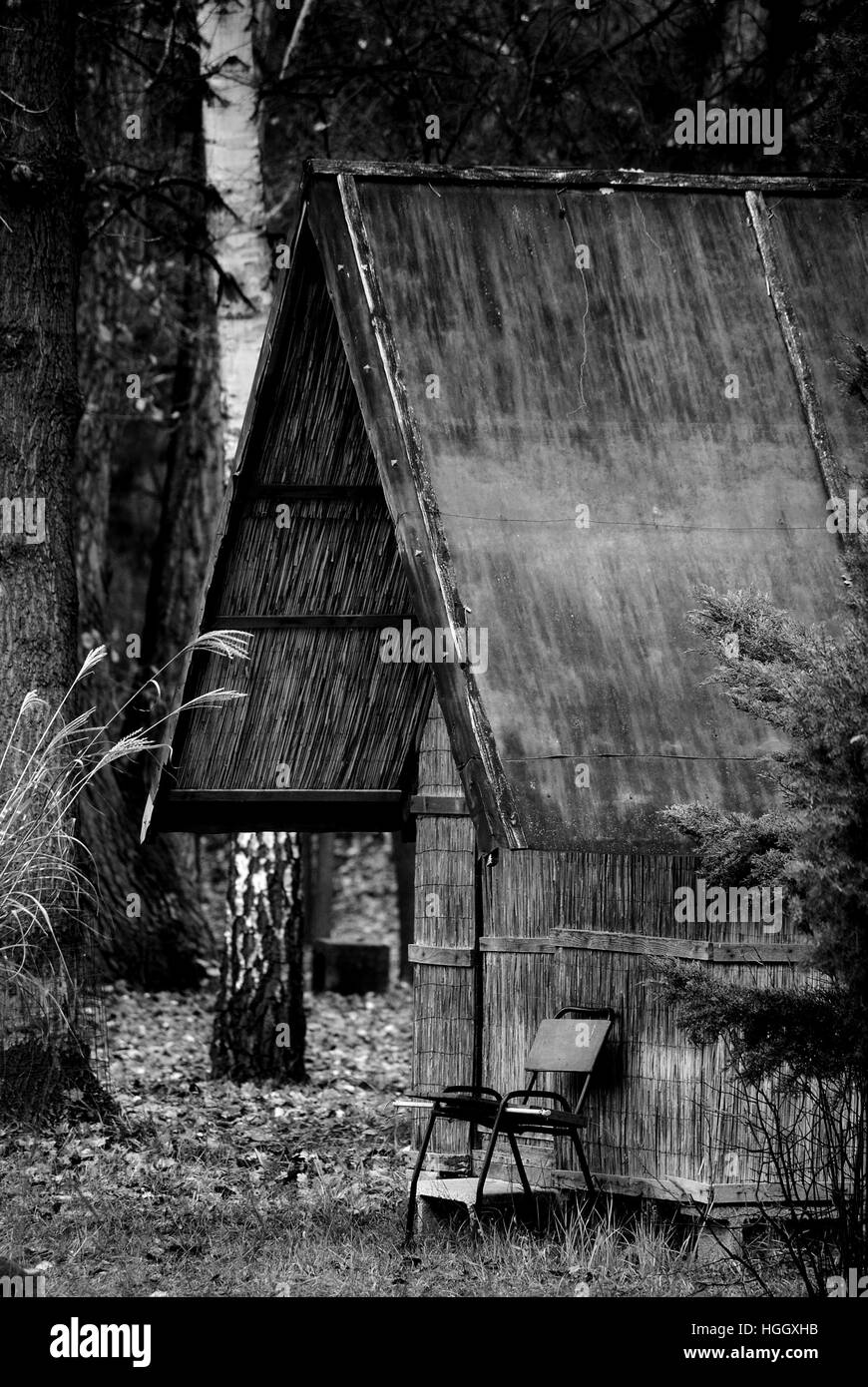 House, House in reed, BW house,Lake, peace,relax,chill,chilling,quiet,tree,fisher house, reflectionp,nice house, Stock Photo