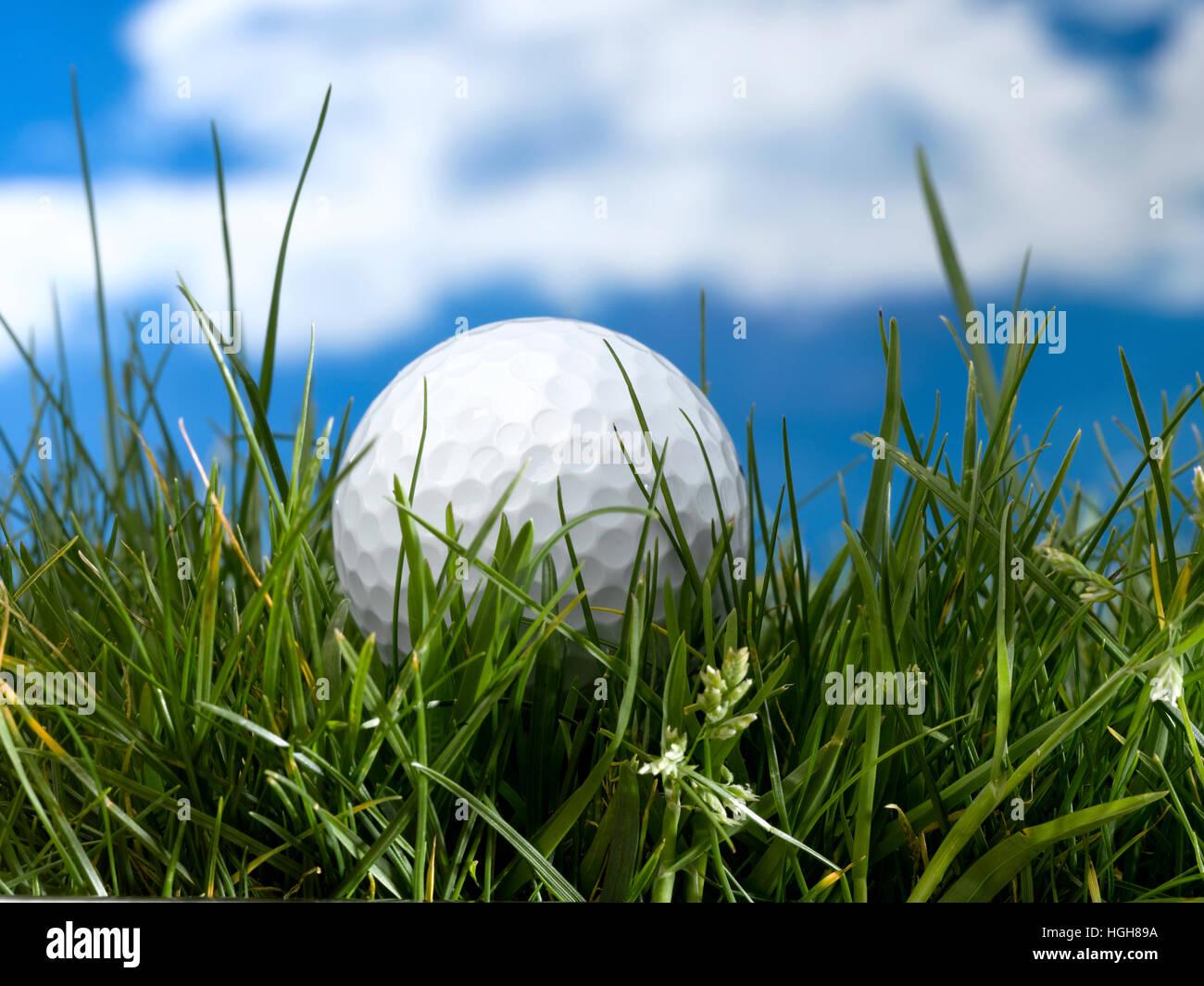 Golf Ball in long grass - Stock Image