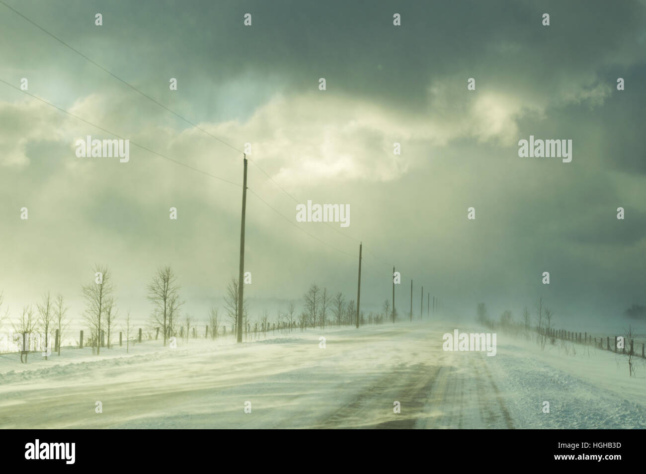 Highway with ground drifted snow illuminated by sunshine during a winter snow squall. Showing trees and power lines - Stock Image