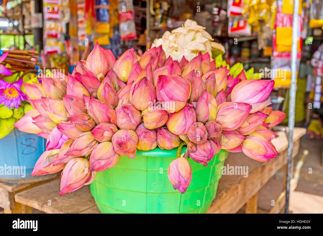 Plastic Lotus Flower Stock Photos Plastic Lotus Flower Stock