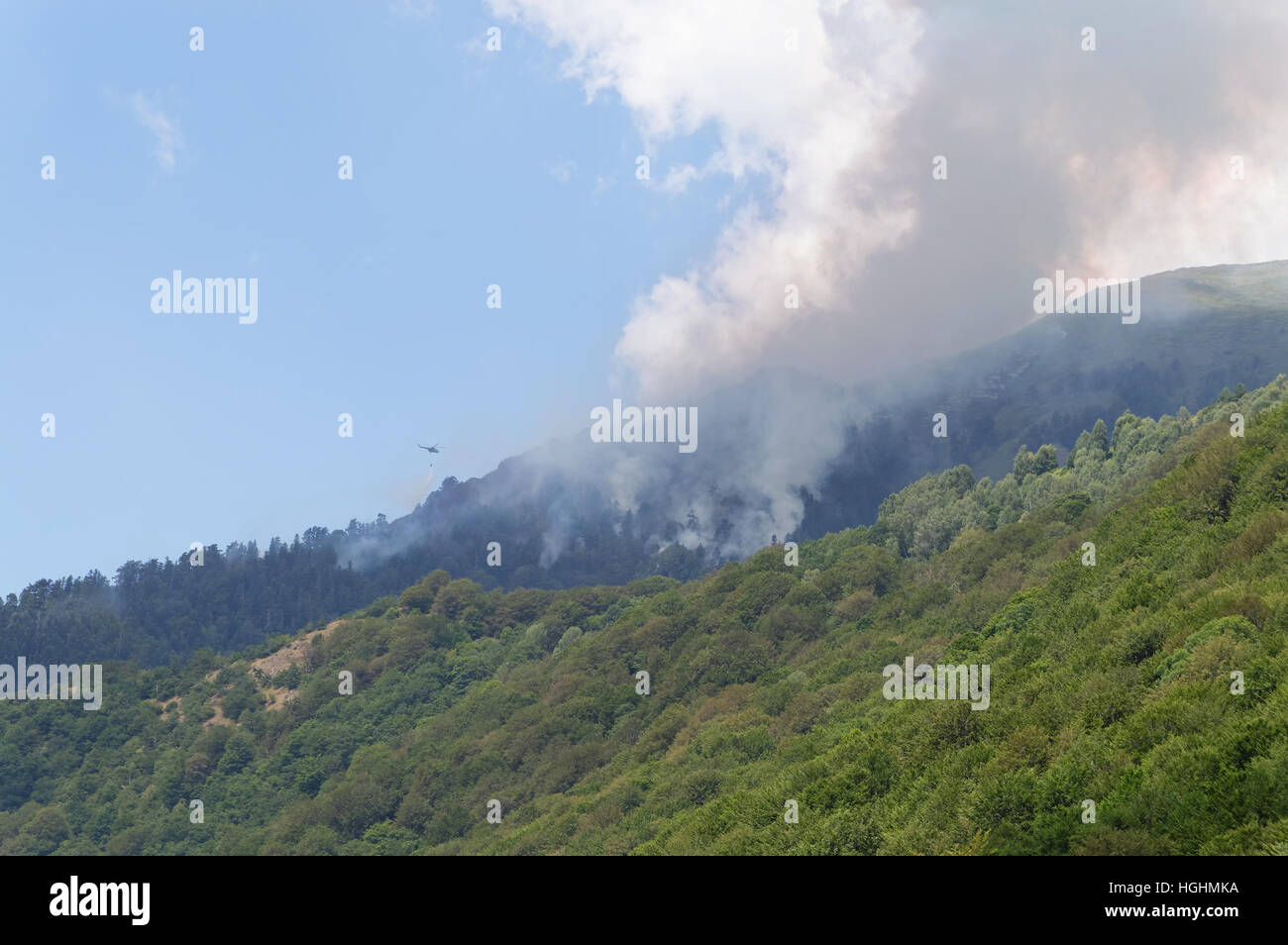 Helicopter fighting widely spread mountain forest fire in Rila Mountain, Bulgaria - Stock Image