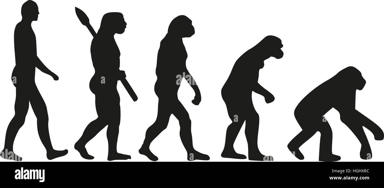 Evolution backwards - Stock Image