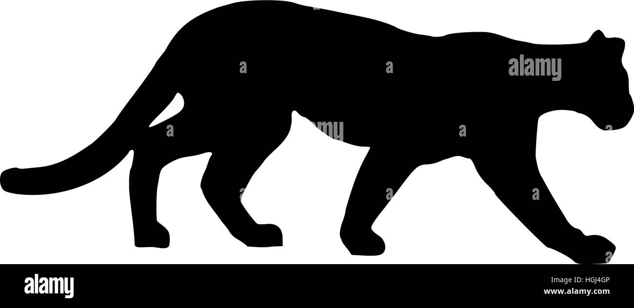panther leopard silhouette stock photo 130705814 alamy