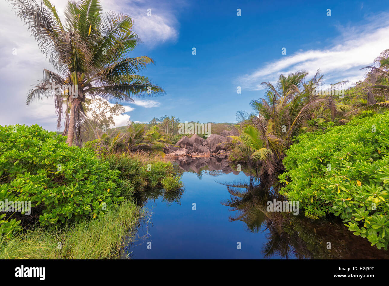 African Tropical Lake In Jungle La Digue Island In