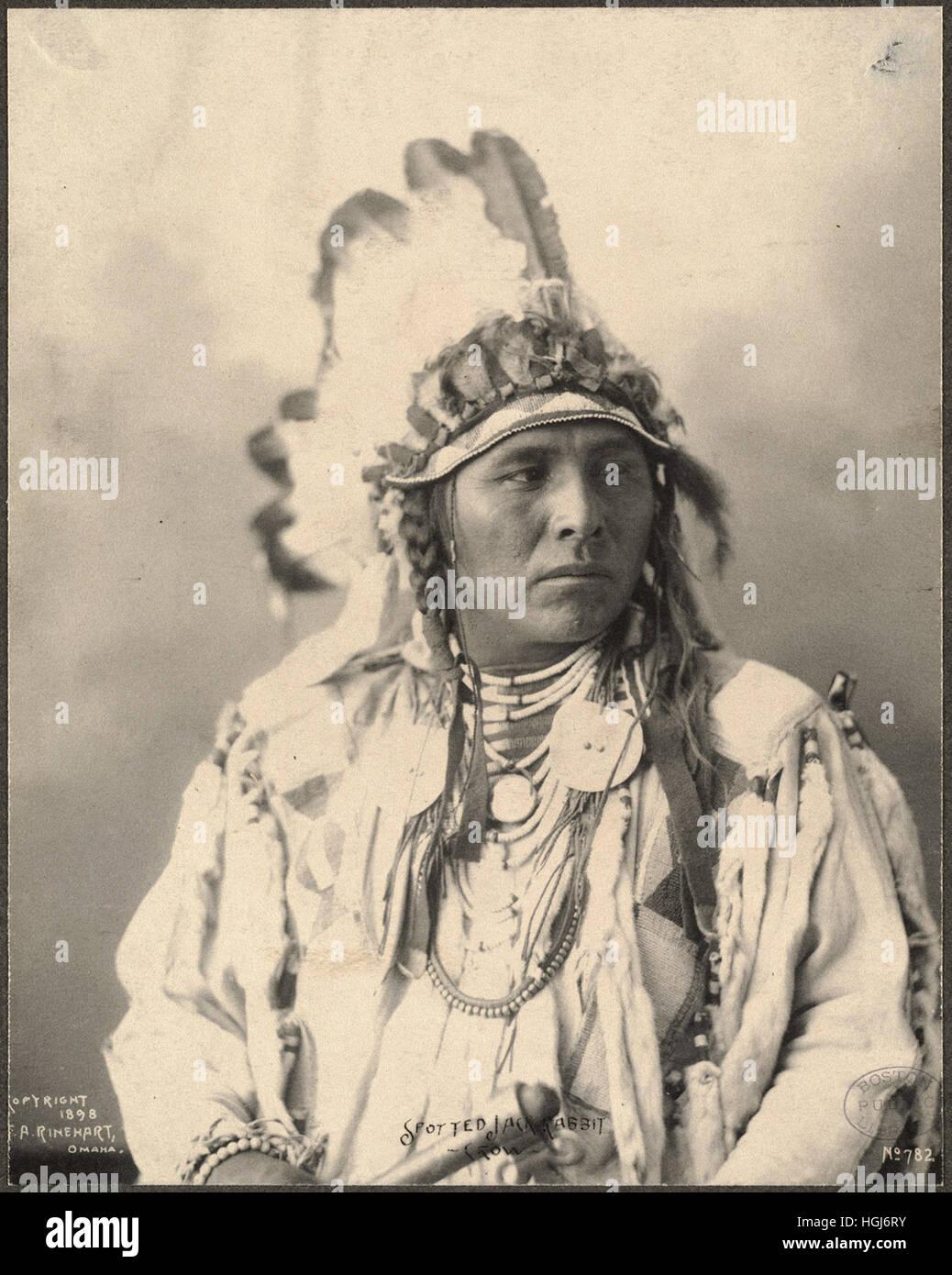 Spotted Jack Rabbit, Crow   - 1898 Indian Congress - Photo : Frank A. Rinehart - Stock Image