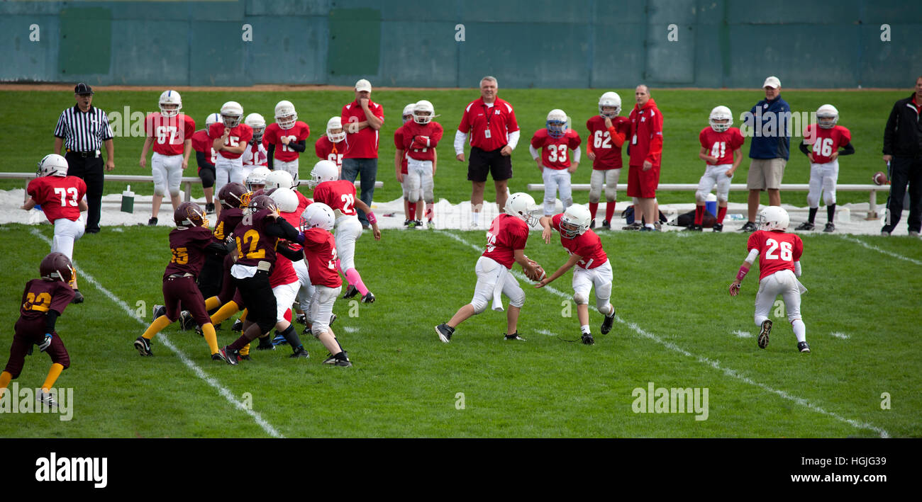 Quarterback hands the football to running back as line blocks in football game played by boys age 11. St Paul Minnesota - Stock Image