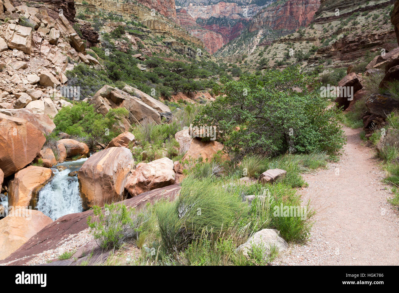 Bright Angel Creek pouring over a small waterfall near the North Kaibab Trail. Grand Canyon National Park, Arizona - Stock Image