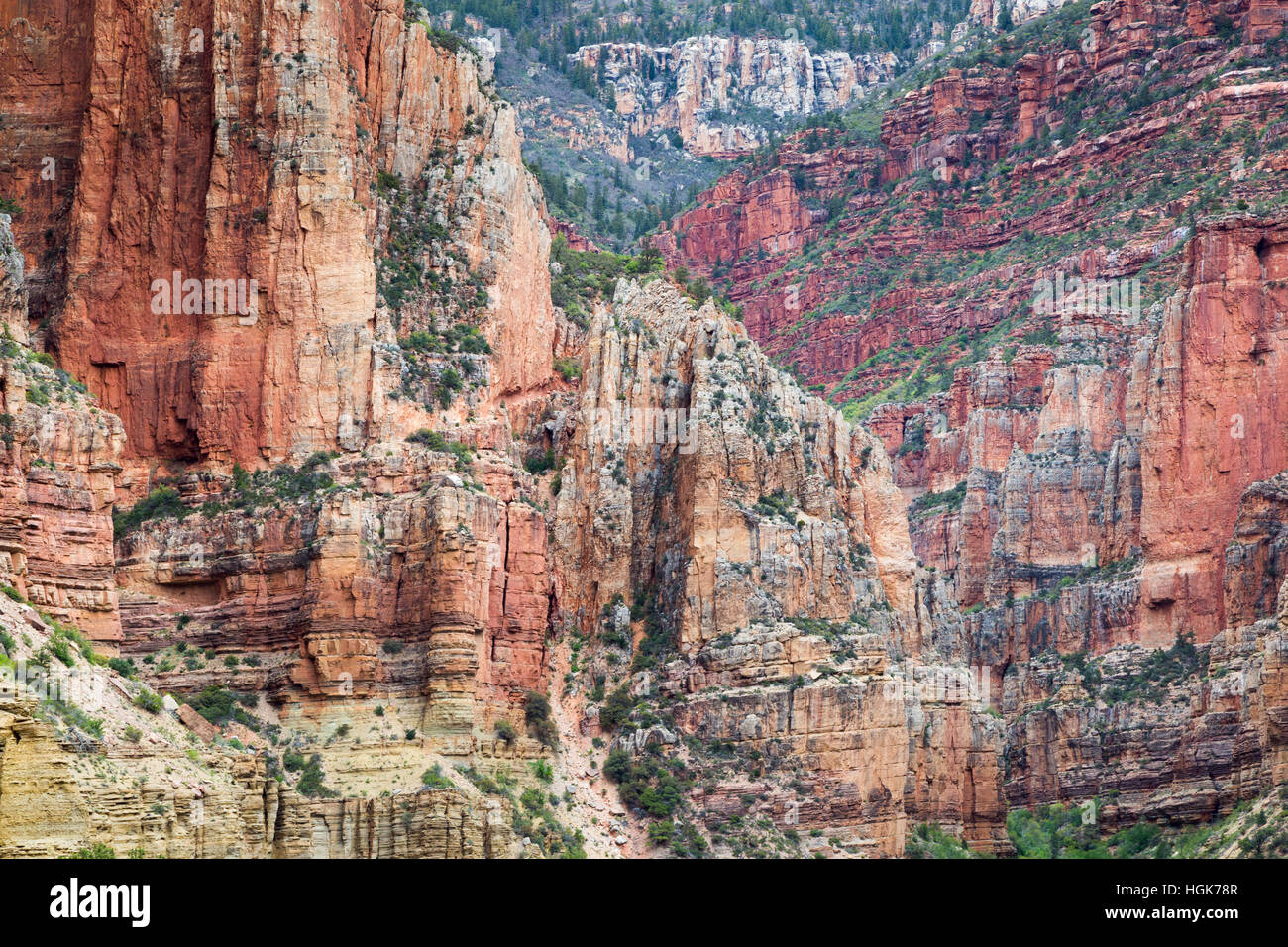 The Supai Group on top of the Redwall Limestone formation and the Muav Limestone formation. Grand Canyon National - Stock Image