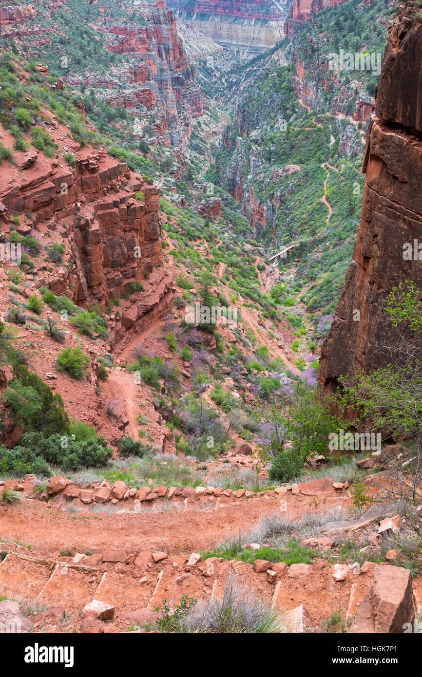 The North Kaibab Trail descending steeply from the Supai Tunnel. Grand Canyon National Park, Arizona Stock Photo
