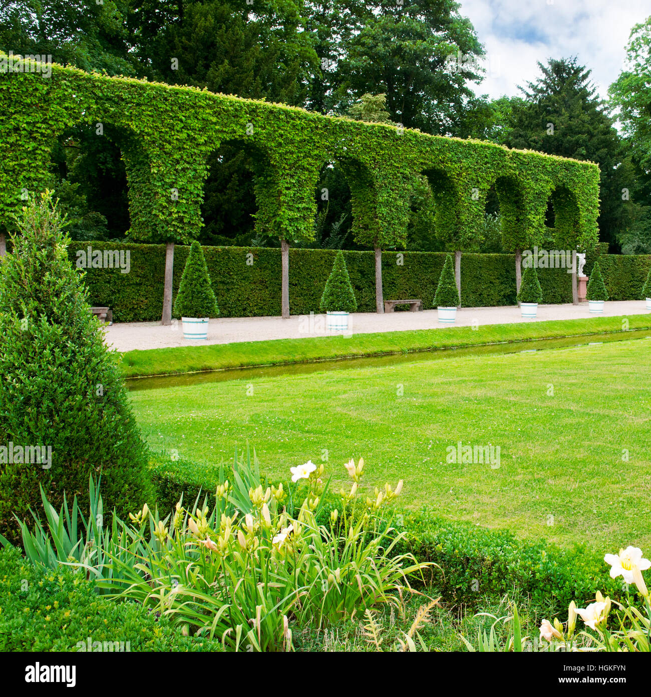 lawn and hedge in a summer park - Stock Image
