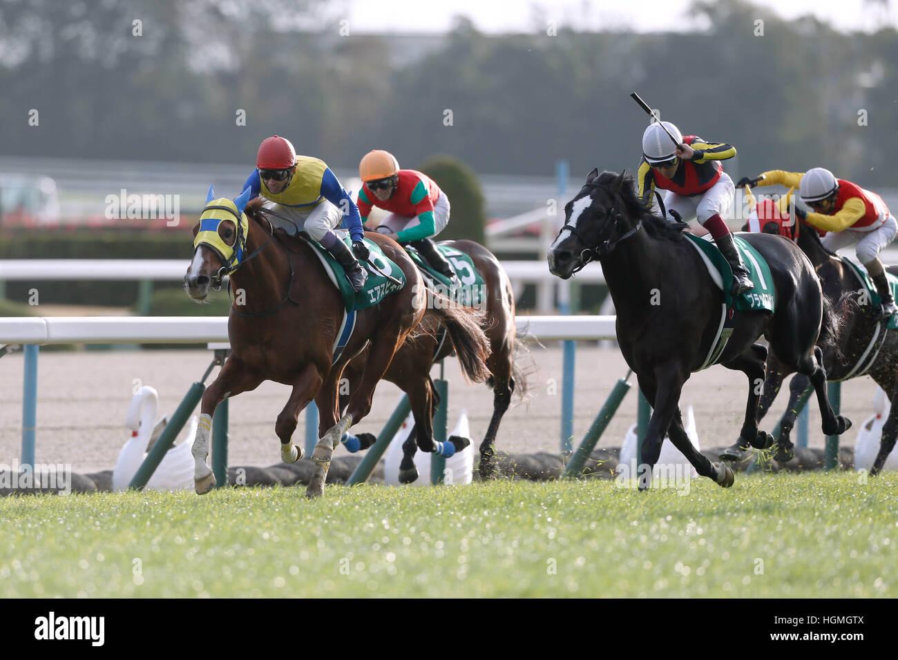 (L-R) Air Spinel (Yutaka Take), Meiner Honey (Daichi Shibata), Black Spinel (Yuichi Fukunaga), Kento O (Ryuji Wada), Stock Photo