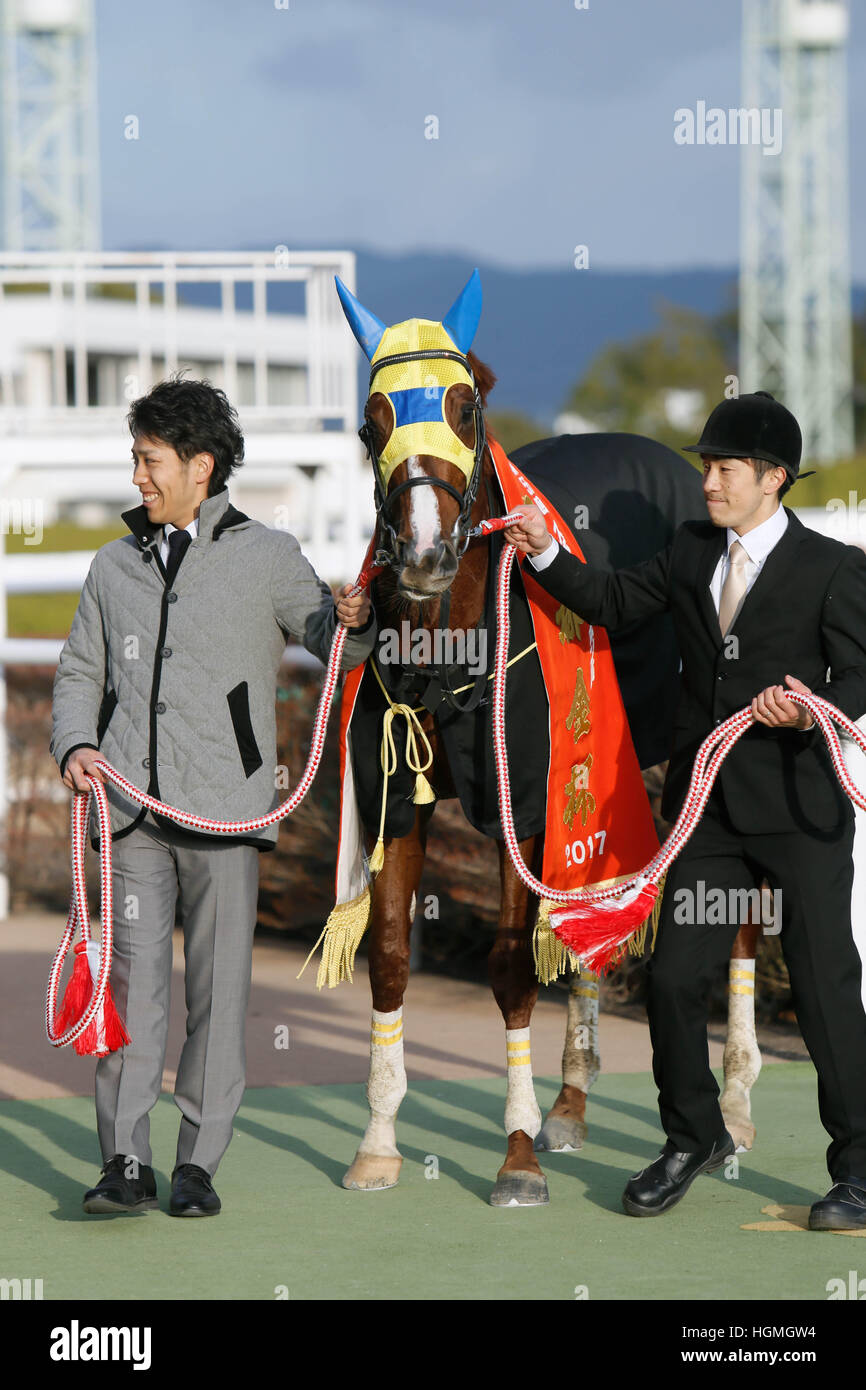 Air Spinel, JANUARY 5, 2017 - Horse Racing : Air Spinel after winning the Sports Nippon Sho Kyoto Kimpai at Kyoto - Stock Image