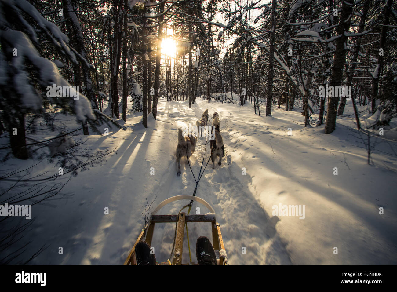Amazing sight of a Canadian Winter - Stock Image