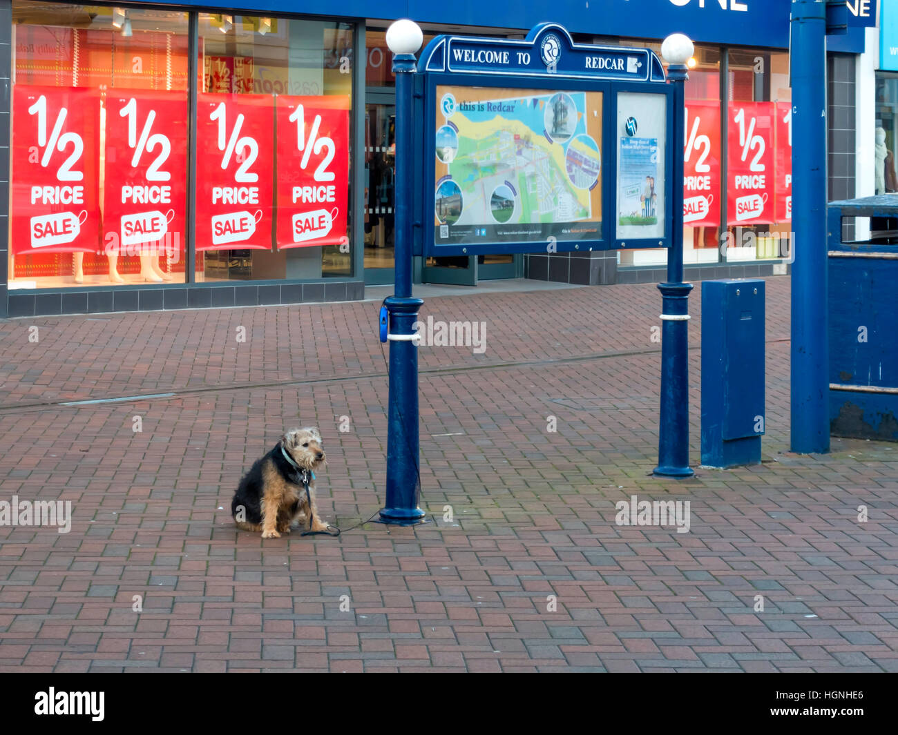 Lonely dog tied up in a deserted High Street waiting for his master - Stock Image