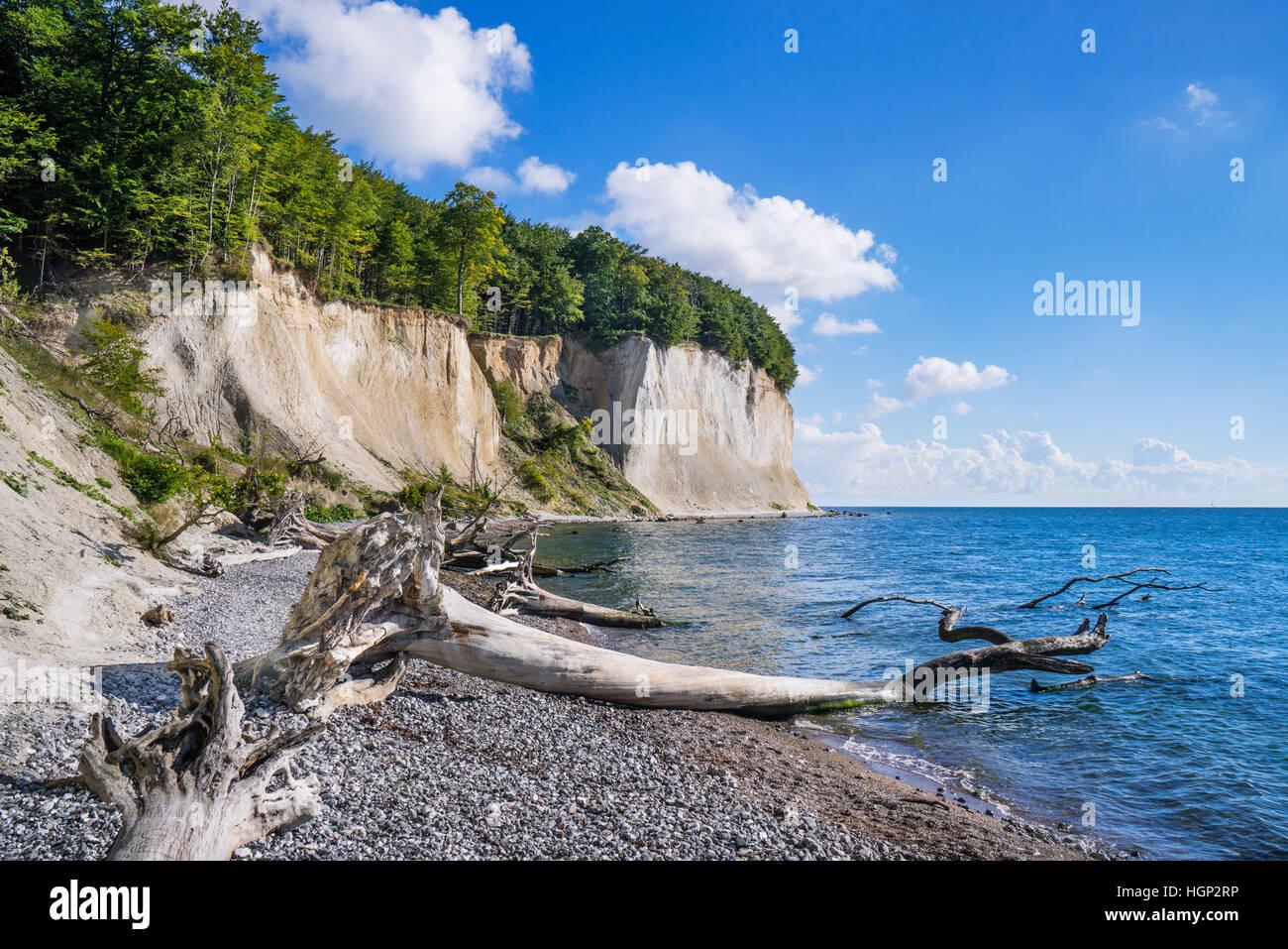 chalk cliffs at Jasmund National Park, near Königsstuhl (King's Chair) on the island of Rügen, Mecklenburg - Stock Image