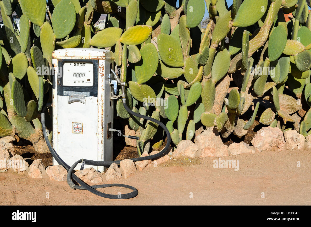 Petrol pump and cactus trees in Solitaire, Namibia - Stock Image